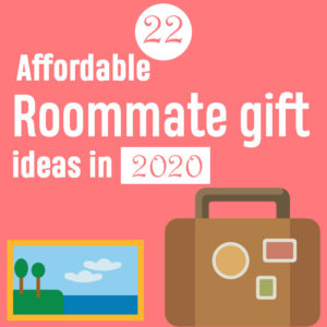 22 Affordable Roommate gift ideas in 2020
