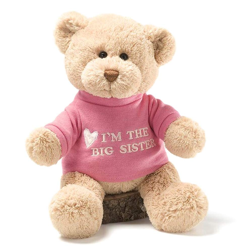 I'm the Big Sister T-Shirt Teddy Bear